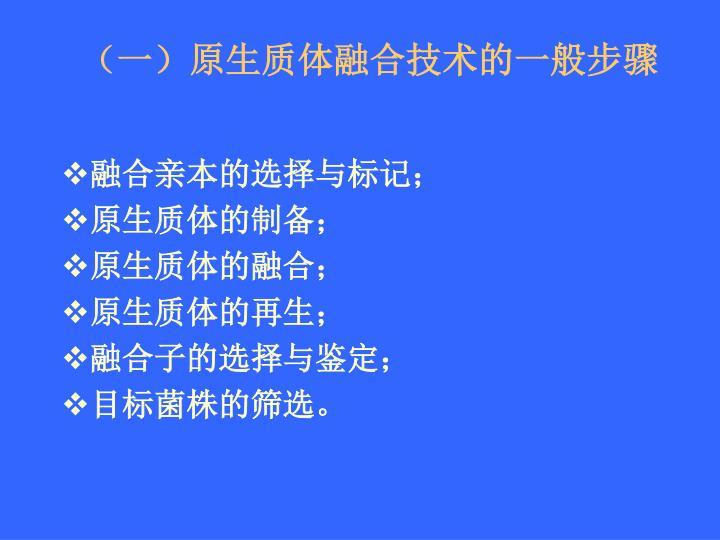 (一)原生质体融合技术的一般步骤