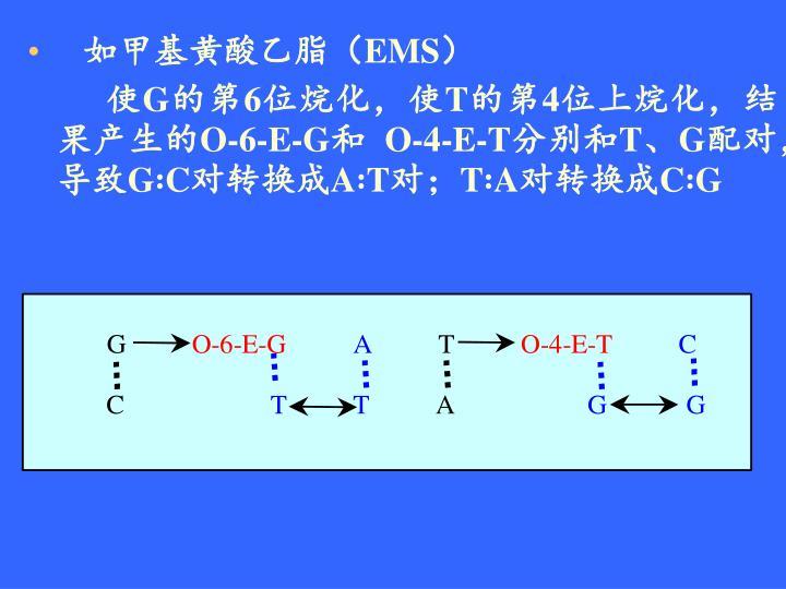 如甲基黄酸乙脂(