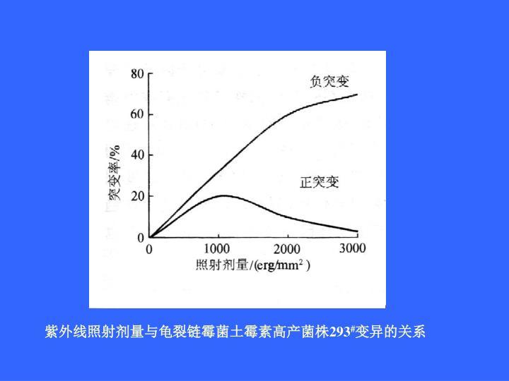 紫外线照射剂量与龟裂链霉菌土霉素高产菌株