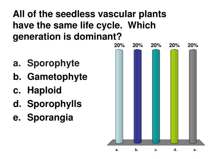 All of the seedless vascular plants have the same life cycle.  Which generation is dominant?