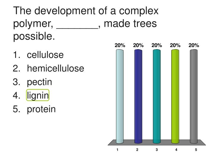 The development of a complex polymer, _______, made trees possible.