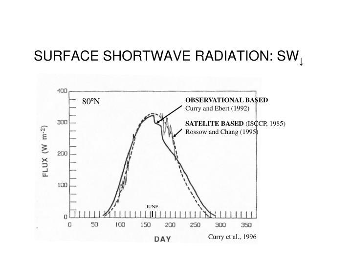 SURFACE SHORTWAVE RADIATION: SW