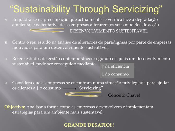 """Sustainability Through Servicizing"""