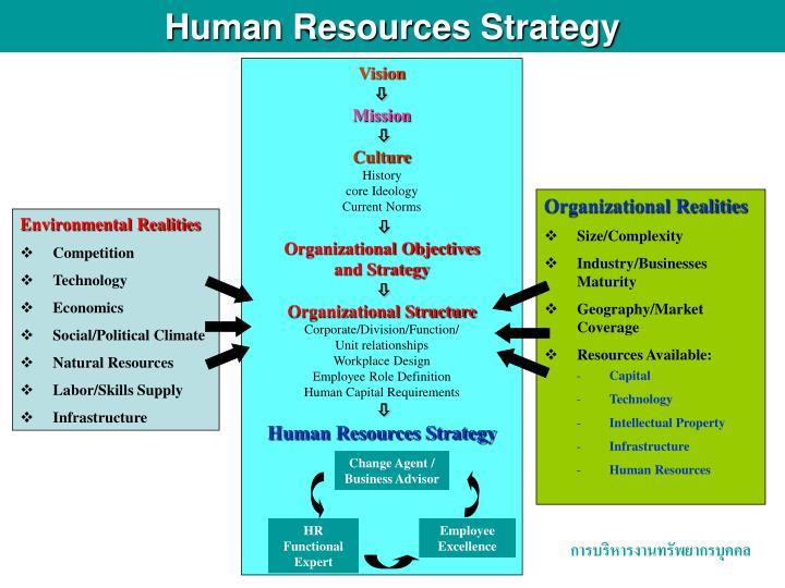 Organizational Realities
