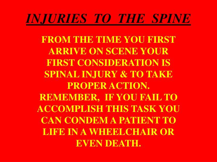 INJURIES  TO  THE  SPINE