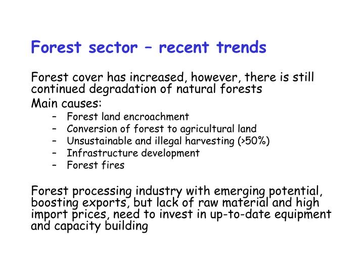 Forest sector – recent trends