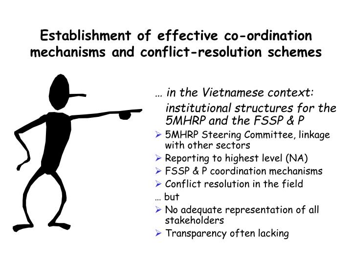 Establishment of effective co-ordination mechanisms and conflict-resolution schemes