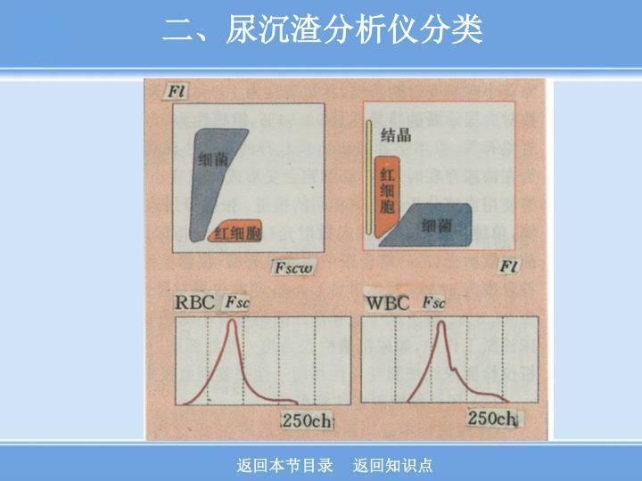 二、尿沉渣分析仪分类
