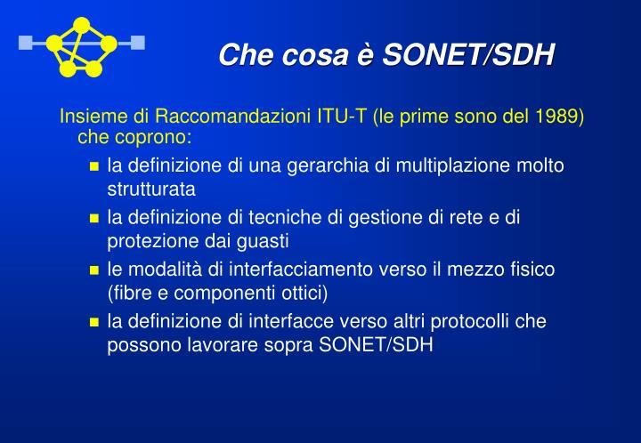 Che cosa è SONET/SDH