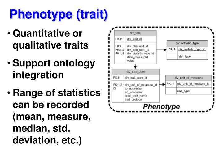 Phenotype (trait)