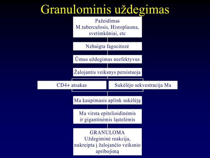 Granulominis uždegimas