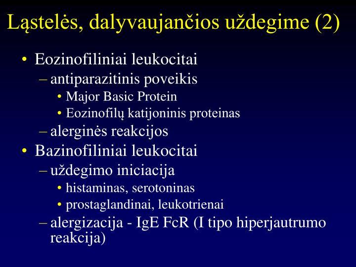 Ląstelės, dalyvaujančios uždegime (2)