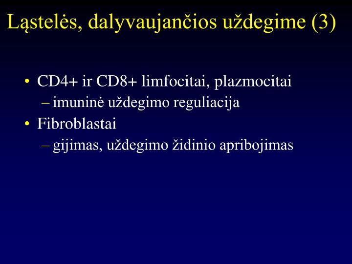 Ląstelės, dalyvaujančios uždegime (3)