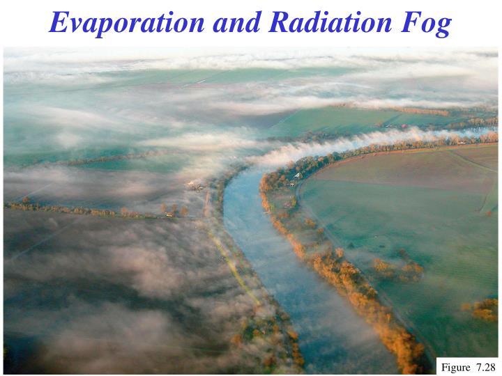 Evaporation and Radiation Fog