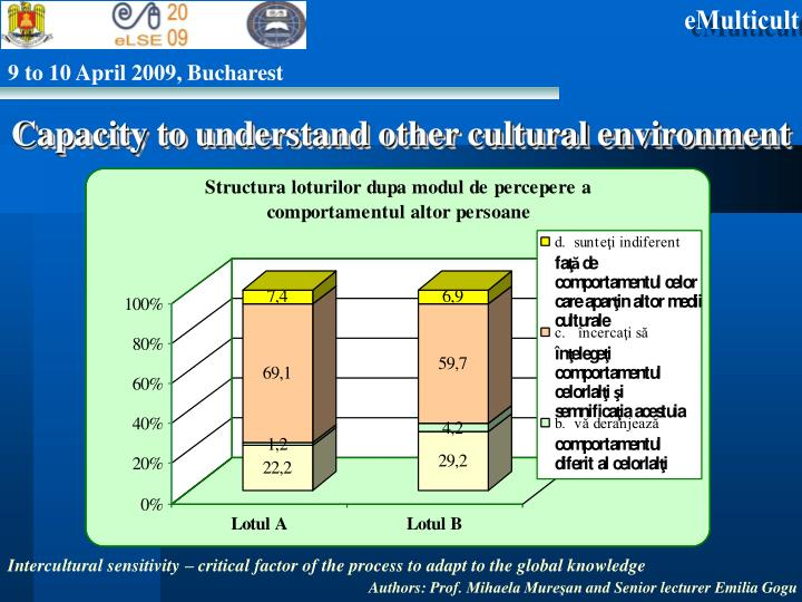 Capacity to understand other cultural environment