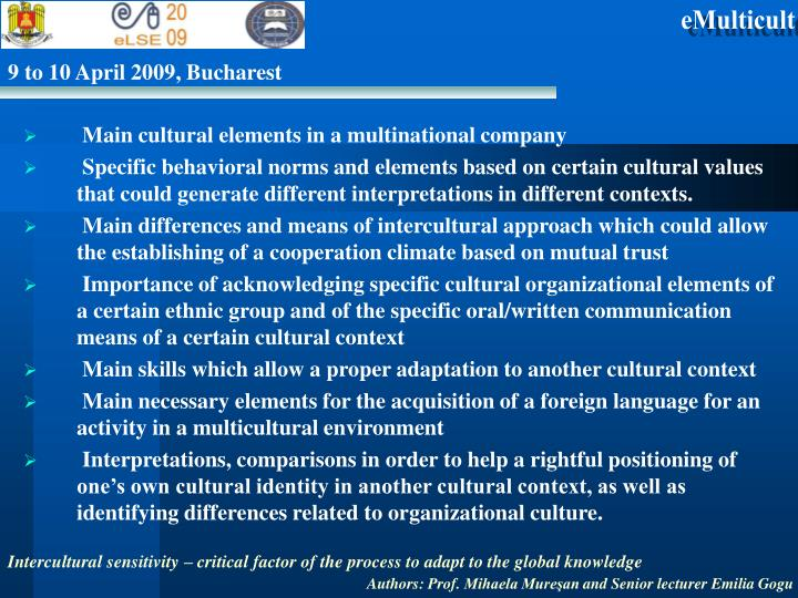 Main cultural elements in a multinational company