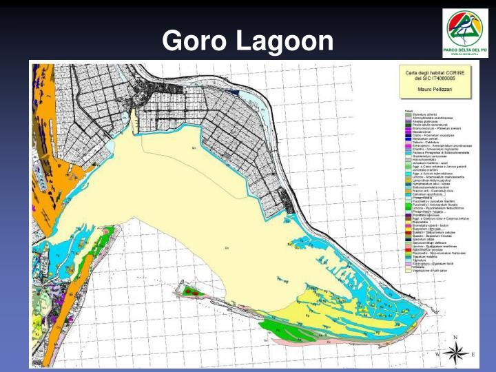 Goro Lagoon