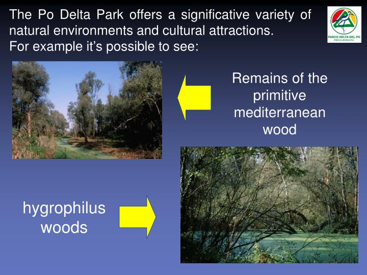 The Po Delta Park offers a significative variety of natural environments and cultural attractions.