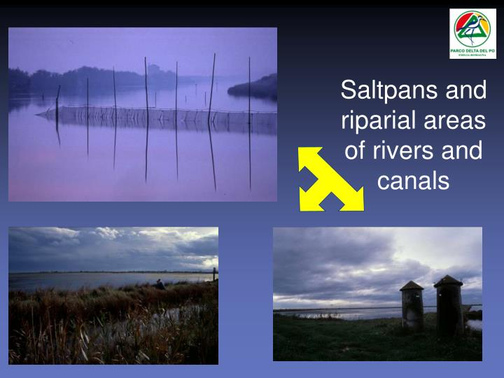 Saltpans and riparial areas of rivers and canals