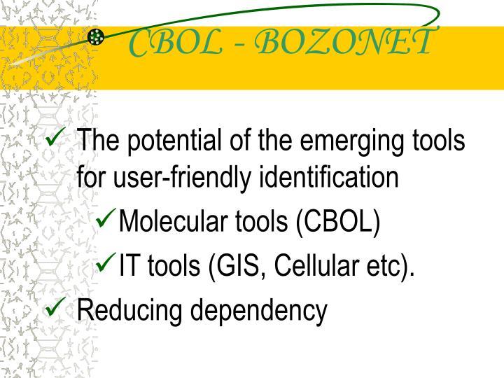 CBOL - BOZONET