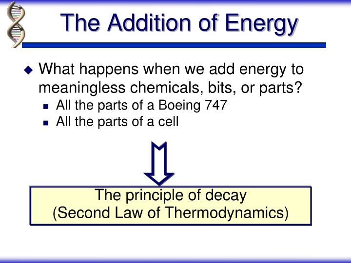 What happens when we add energy to meaningless chemicals, bits, or parts?