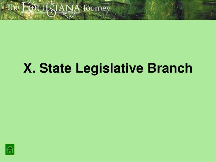 X. State Legislative Branch