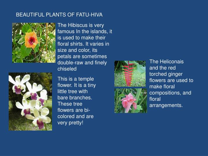 BEAUTIFUL PLANTS OF FATU-HIVA