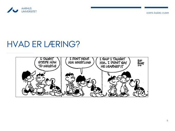 Hvad er læring?