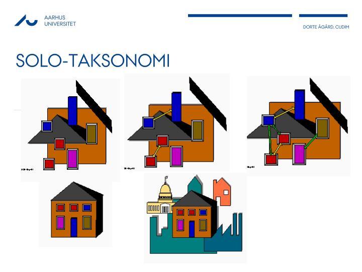Solo-taksonomi