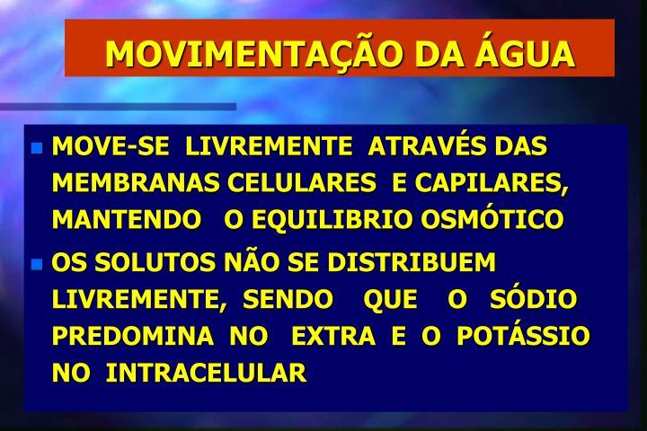 MOVIMENTAÇÃO DA ÁGUA