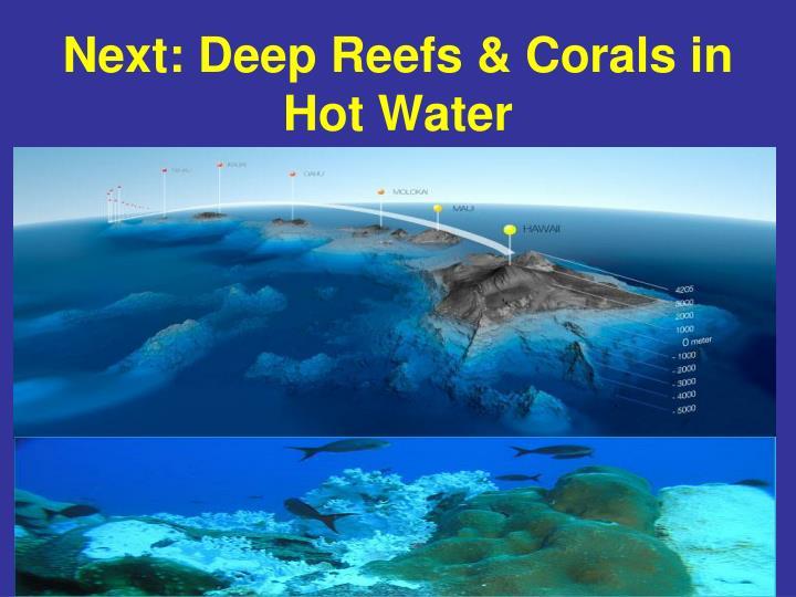 Next: Deep Reefs & Corals in Hot Water