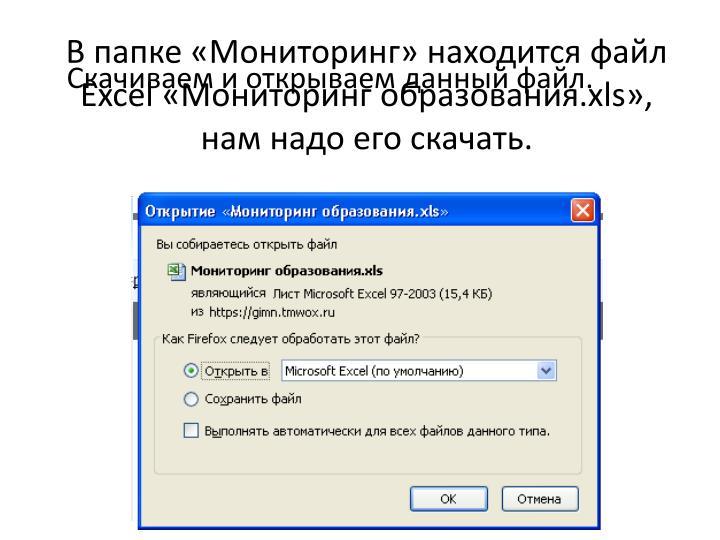 В папке «Мониторинг» находится файл