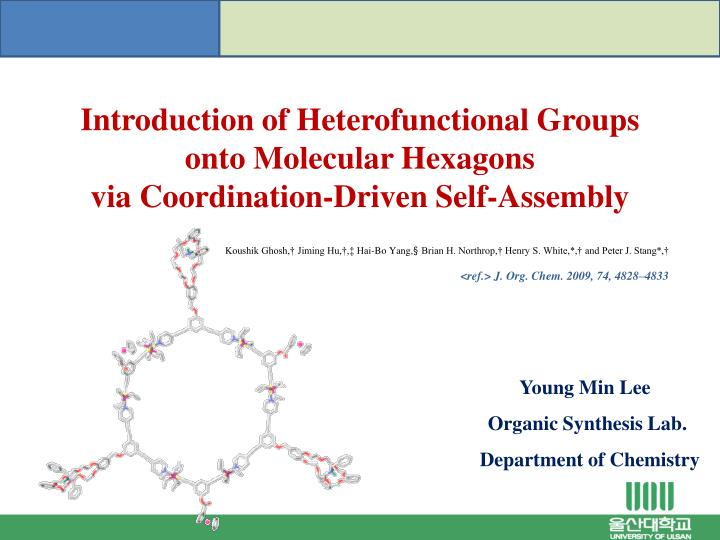 Introduction of Heterofunctional Groups onto Molecular Hexagons