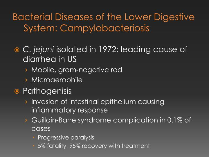 Bacterial Diseases of the Lower Digestive System: