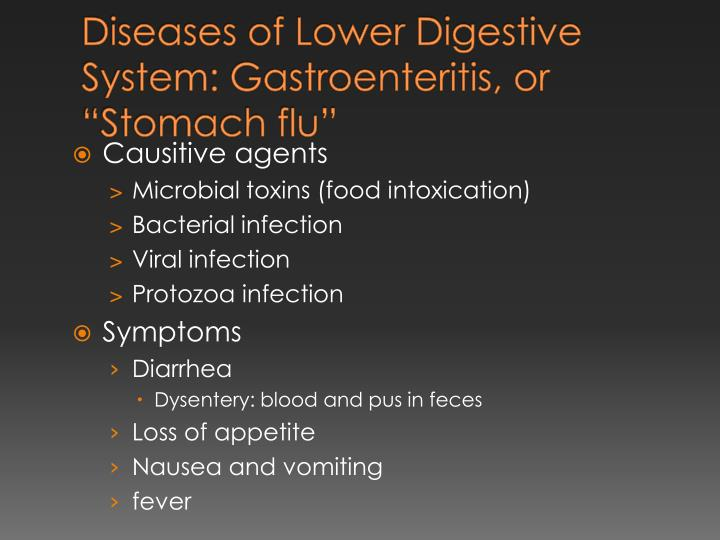 "Diseases of Lower Digestive System: Gastroenteritis, or ""Stomach flu"""