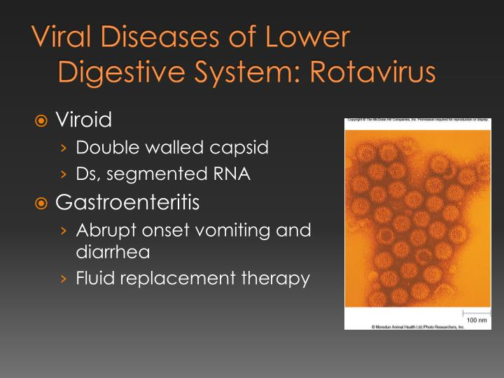 Viral Diseases of Lower Digestive System: Rotavirus