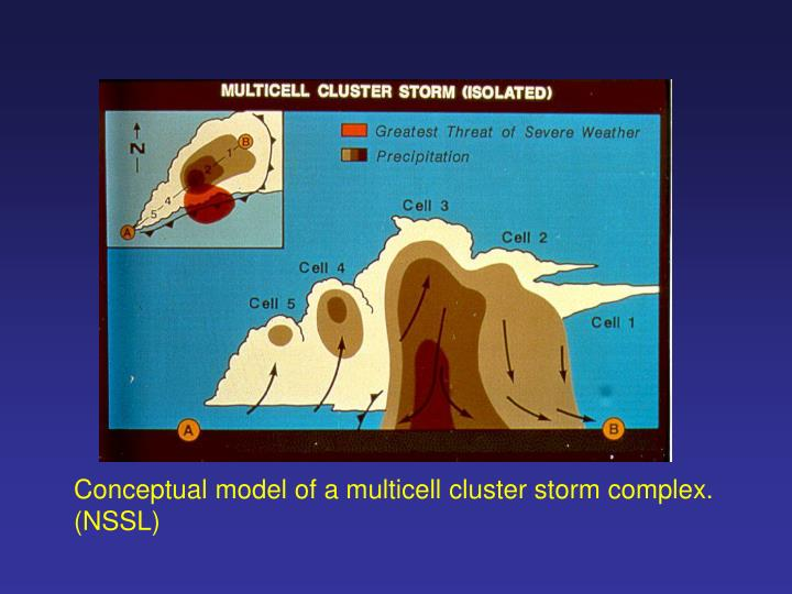 Conceptual model of a multicell cluster storm complex.
