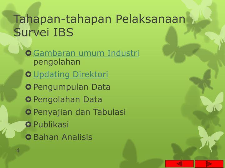 Tahapan-tahapan Pelaksanaan Survei IBS