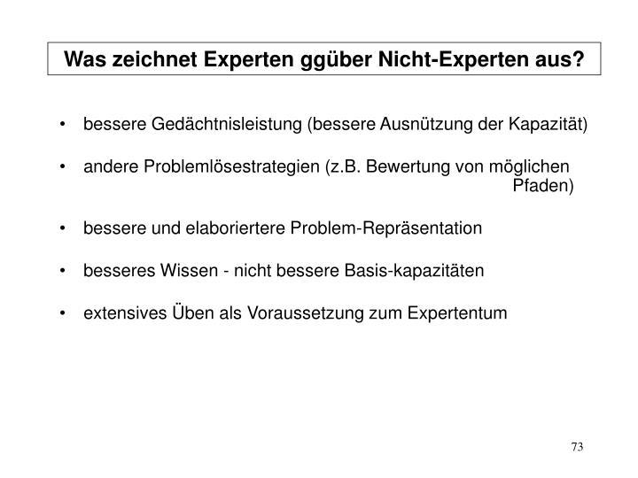 Was zeichnet Experten ggüber Nicht-Experten aus?