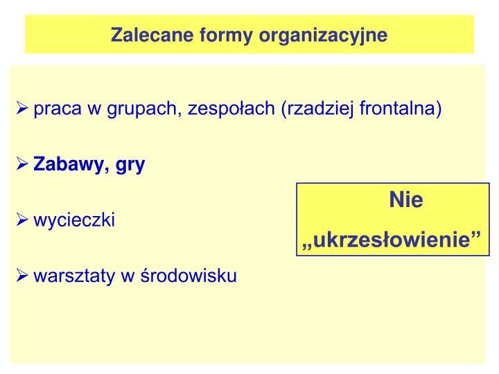 Zalecane formy organizacyjne