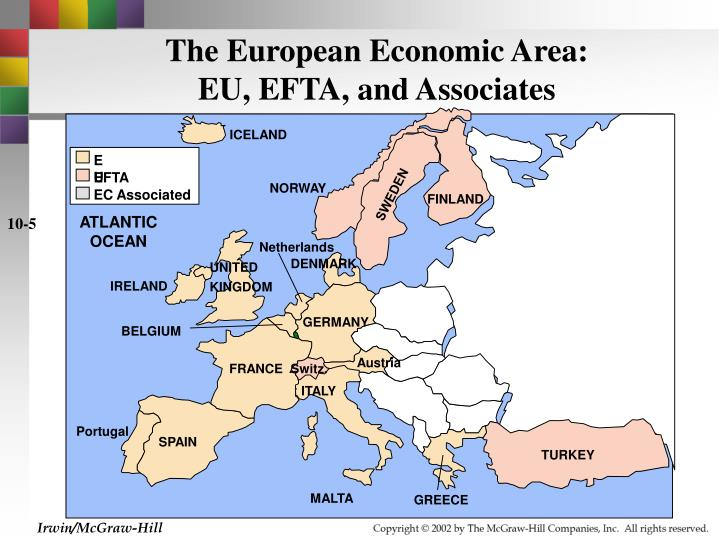 The European Economic Area: