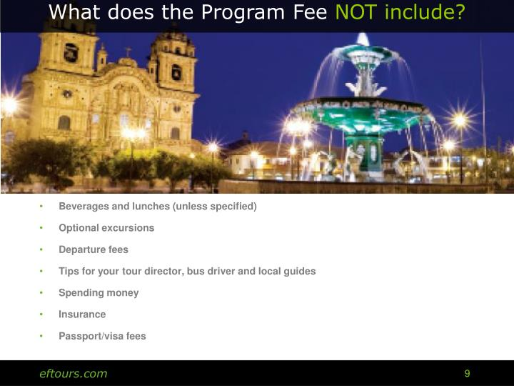 What does the Program Fee