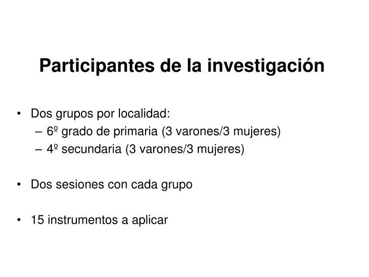 Participantes de la investigación