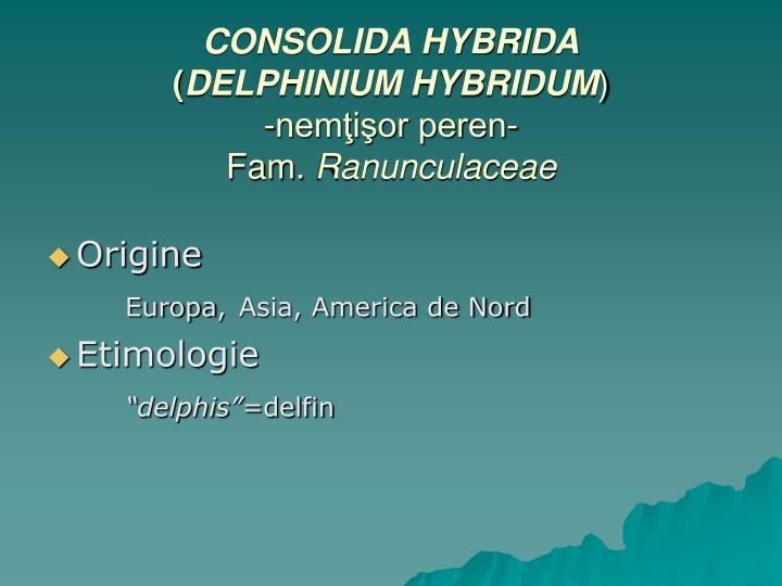 CONSOLIDA HYBRIDA