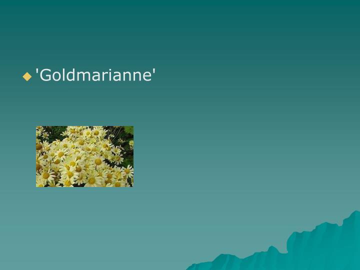 'Goldmarianne'