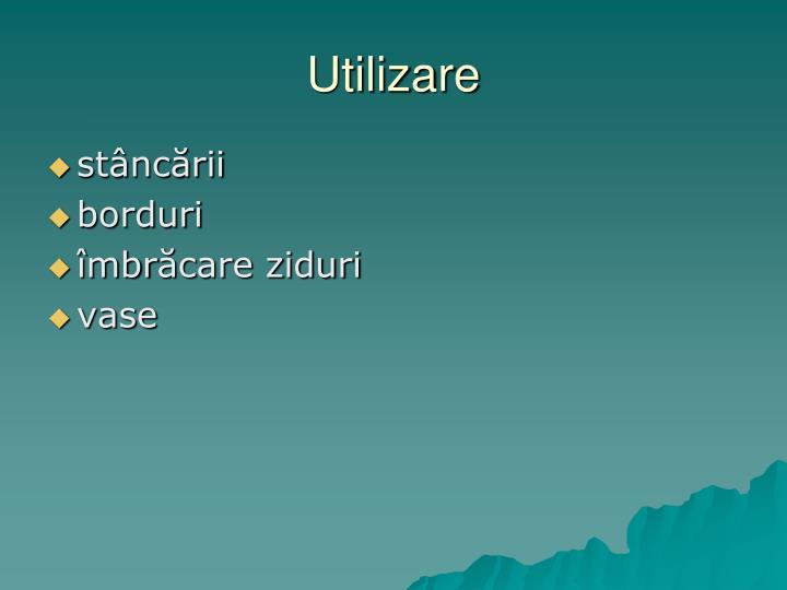 Utilizare