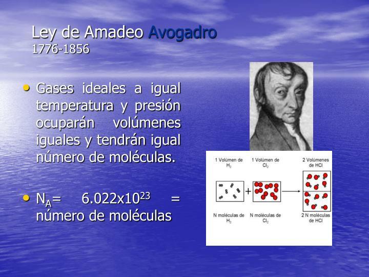 Ley de Amadeo
