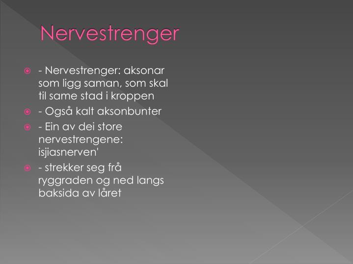 Nervestrenger