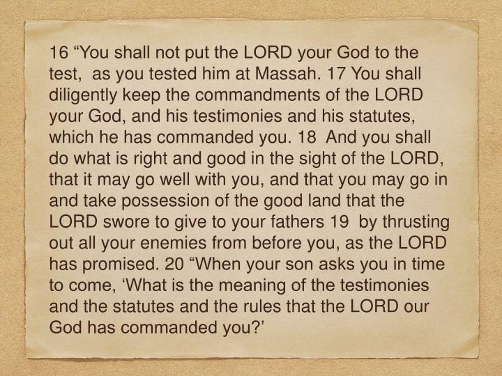 "16 ""You shall not put the LORD your God to the test,  as you tested him at Massah. 17 You shall diligently keep the commandments of the LORD your God, and his testimonies and his statutes, which he has commanded you. 18  And you shall do what is right and good in the sight of the LORD, that it may go well with you, and that you may go in and take possession of the good land that the LORD swore to give to your fathers 19  by thrusting out all your enemies from before you, as the LORD has promised. 20 ""When your son asks you in time to come, 'What is the meaning of the testimonies and the statutes and the rules that the LORD our God has commanded you?'"