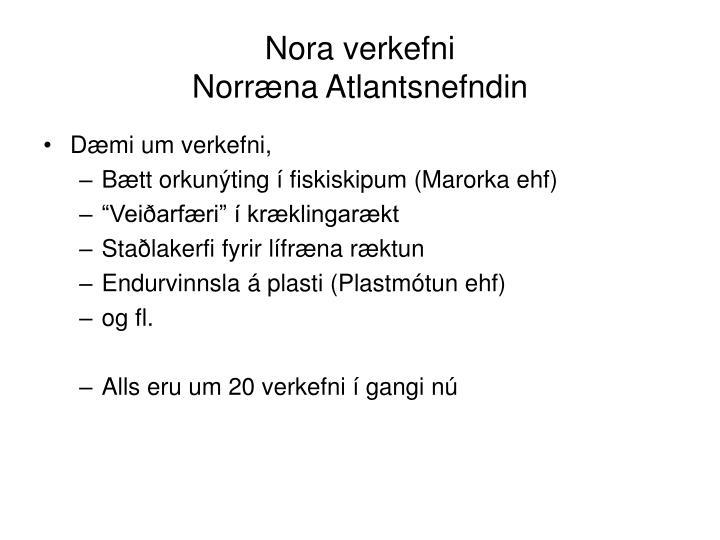 Nora verkefni